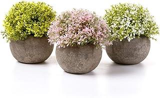 comprar comparacion T4U Plantas Artificiales Plásticas Flor Decorativa en Maceta Multicolor para Oficina en Casa Paquete de 3