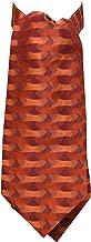 Remo Sartori Made in Italy Men's Silk Rust Pattern Self Cravat Ascot Tie