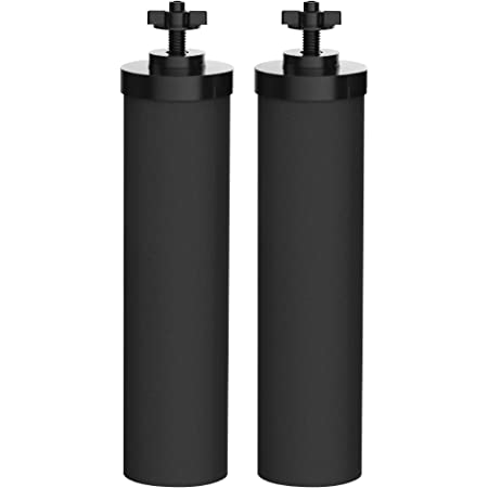 Black DayOne Today DOTBAMBF01 Premium Carbon Block Filter Other Gravity Fed Water Filtration Systems