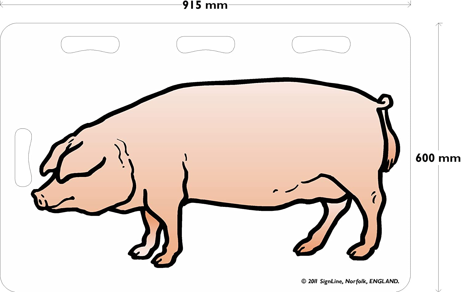 Pig Board, 915mm x 610mm x 10mm, Coloured Clipart of Pig