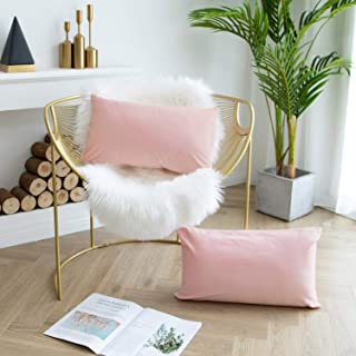 JUSPURBET Velvet Throw Pillow Covers for Sofa Couch Bed,Pack of 2 Throw Pillow Cases,Decorative Soft Pillowcases,16x24 Inches,Pink