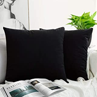 JUEYINGBAILI Throw Pillow Covers Velvet Decorative 2 Packs Ultra-Soft Pillowcase Solid Color SquareCushion for Farmhouse,Couch,Chair,Sofa,Bedroom,Car,18 x 18 Inch,Black