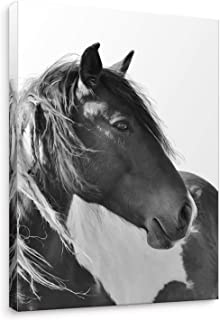 Niwo Art- Black and White A, Horse on Canvas Wall Art Home Decor,Framed Ready to Hang