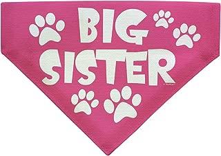 ThisWear Big Sister Dog Gifts Dog Big Sister Dog Bandana Big Sister Small Dog Bandana Scarf Dogs Bib Big Sis
