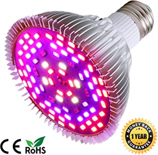 Best Light Bulbs For Hydroponic in Singapore (2020)