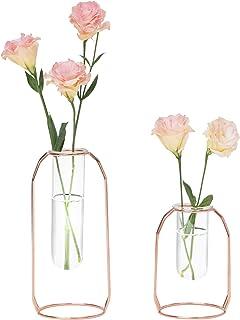 Hyindoor Vase en Verre Hydroponique pour Fleur Vase Transparent Décoratif avec Support en Métal de Or Rose 2 pcs