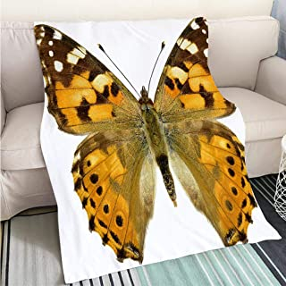 BEICICI Art Design Photos Cool Quilt Isolated Painted Lady Butterfly Hypoallergenic - Plush Microfiber Fill - Machine Washable