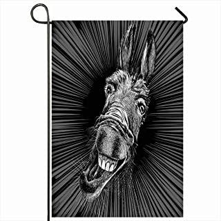 Ahawoso Outdoor Garden Flag 28x40 Inches Gray Head Drawing Teeth Crazy Donkey Animals Wildlife Black Funny Farm Ass Animal Face Mule Isolated Seasonal Home Decor Welcome House Yard Banner Sign Flags