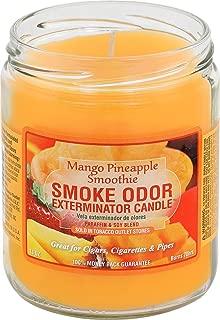 Smoke Odor Exterminator 13oz Jar Candle, Mango Pineapple Smoothie
