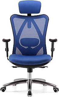 Waniyin Silla de ordenador ergonómica silla de oficina, silla de escritorio de ordenador, reposacabezas ajustable, respaldo y reposabrazos, soporte de espalda baja, malla