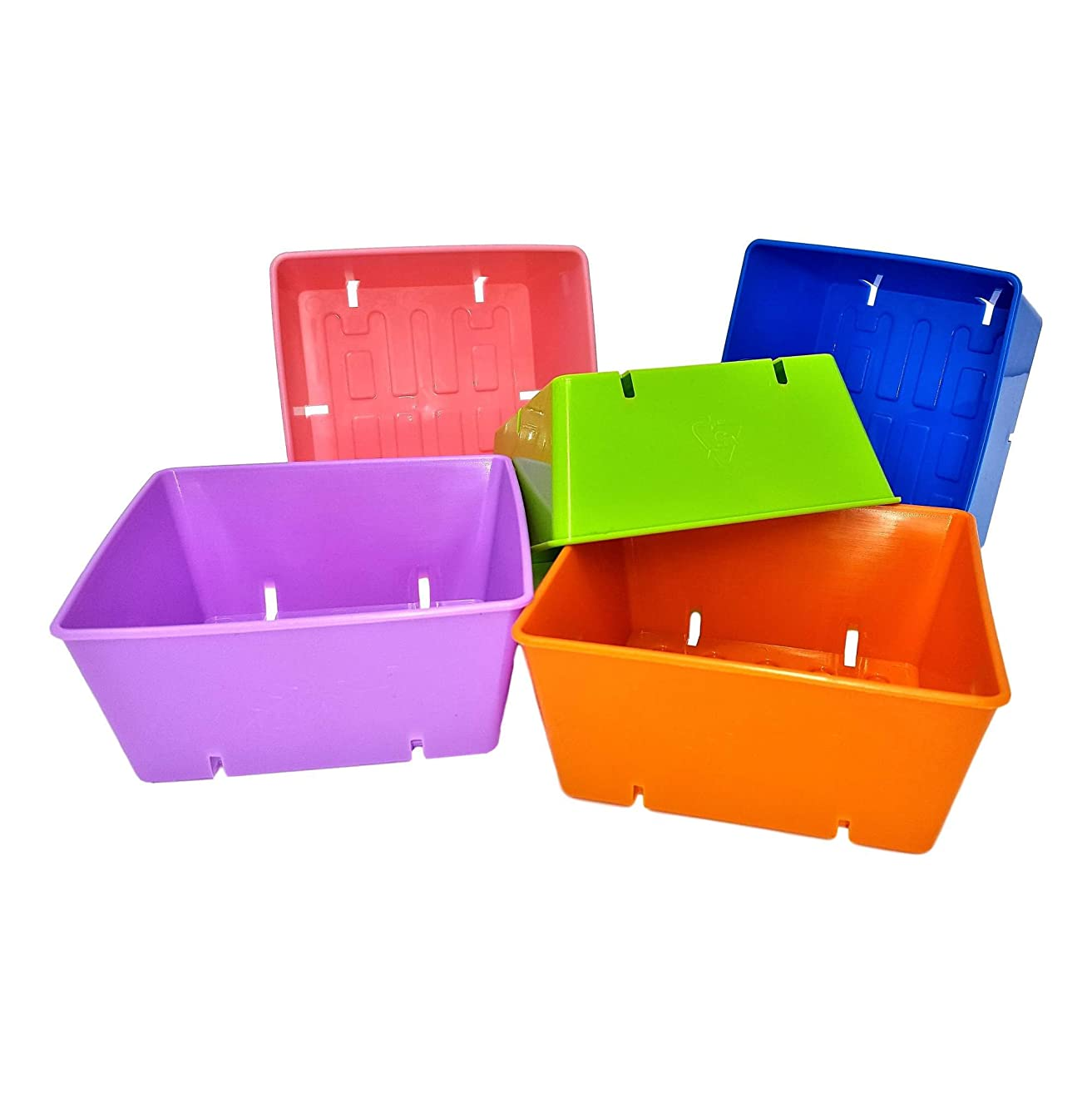 5x5 Seed Tray Multi Color - 40 Pack - Extra Strength 5 x 5 Inserts Grow Microgreens, Wheatgrass Seeds, Fodder 1020 System 801 Trays
