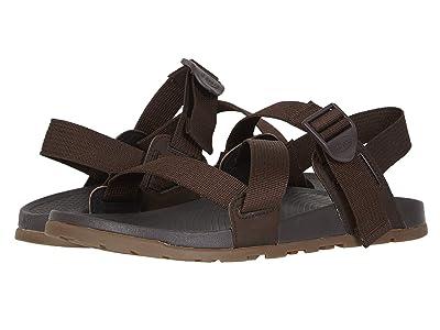 Chaco Lowdown Sandal (Brown) Men