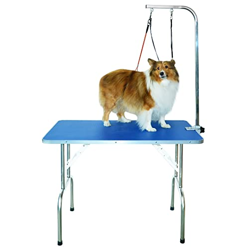 Magnificent Pet Grooming Table Amazon Co Uk Home Interior And Landscaping Ologienasavecom