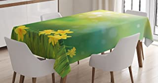Ambesonne Daffodil Decor Tablecloth, Fresh Daffodil Flowers On Spring Sun Beams Blurred Background Picture Art Print, Rectangular Table Cover for Dining Room Kitchen, 52x70 Inches, Yellow Green