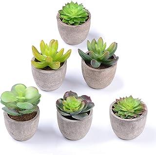 YQing 6 PCS Plantes Succulentes Artificielles Vertes Pot Plantes Grasses Home Garden Table Déco