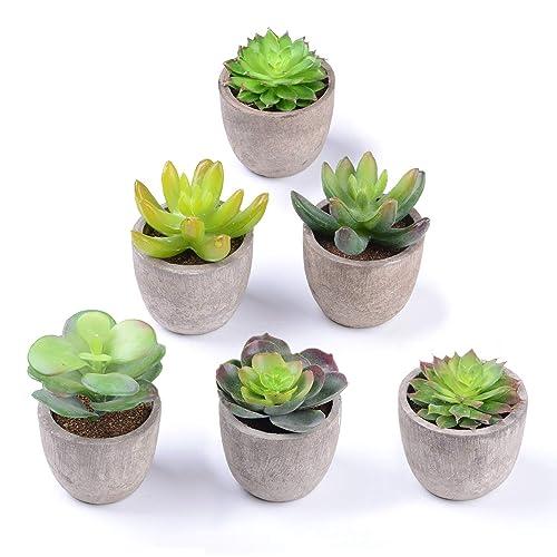 Attvn Plantes succulentes artificielles - Set de 6 planteur succulentes faux cactus plantes