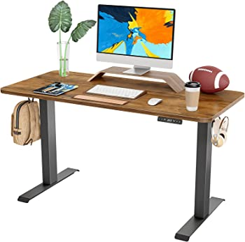 Famisky 40 x 24 Inch Dual Motor Adjustable Height Electric Standing Desk