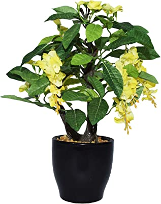 Fourwalls Artificial Wisteria Flowers in a Ceramic Pot for Home Décor (25 cm, Yellow)