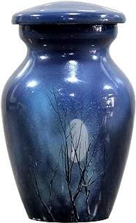 eSplanade Cremation urn Memorials urns Container Jar Pot | Metal Urns | Burial Urn | Memorials Keepsake urn (Blue Moon)
