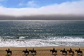 Best half moon bay pictures Reviews