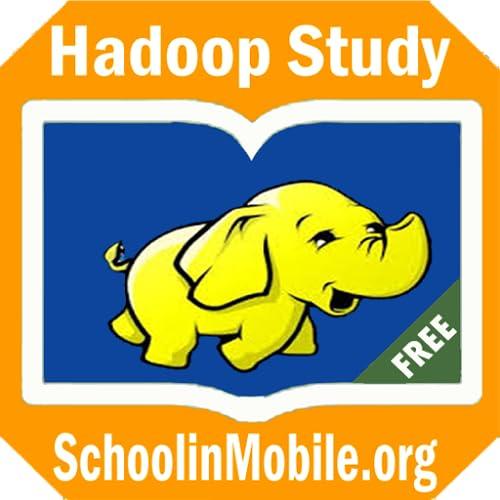 Saiba Big Data e Hadoop gratuito