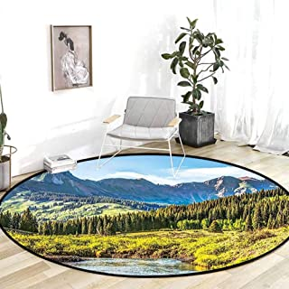 Runner Rug for Hallway Lake House Decor Mountain Vista with Thick Forest Trees Mountain Flowing River Grass Cloudy Sky Valley Multi Floor Carpet 4'Round