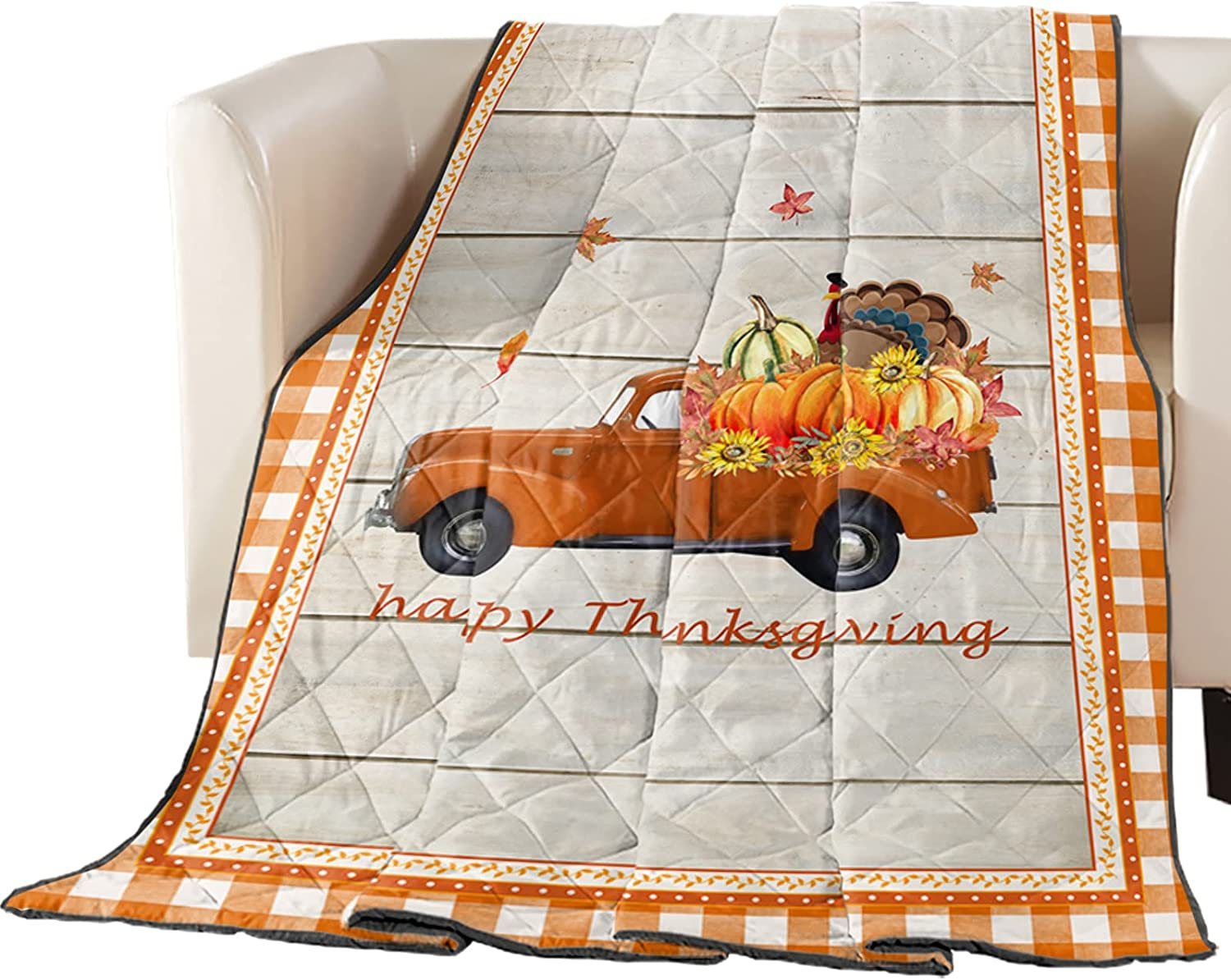 Down Alternative Reversible Comforter Than 5 ☆ very popular Blanket Throw Sale SALE% OFF Quilted