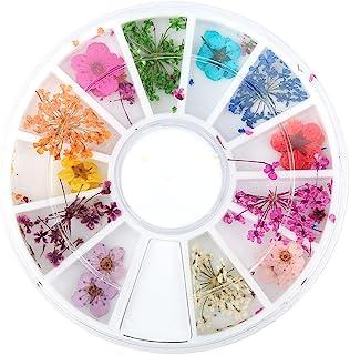 Decoración de Uñas 2pcs 12 Tipos de Flores Secas Natural Conjunto de Flores Secas Real Manicura Artes