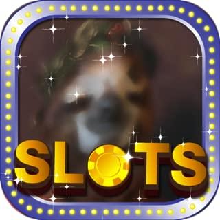 Caesar Free Slots Wolf Run - Awesome Las Vegas City Casino Game Free
