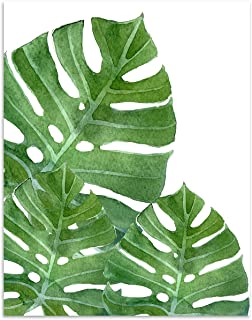 Tropical Monstera Leaf Watercolor Wall Art. 11x14 Unframed Decor Print - Makes a Great Gift for Botanical, Plant Lovers.