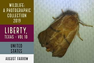 Wildlife: 3 Days in Liberty, Texas - 2019: A Photographic Collection, Vol. 10 (Wildlife: Liberty, Texas)