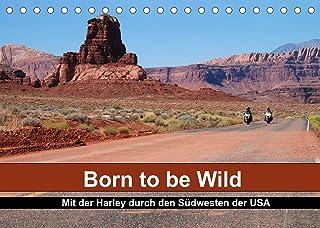 Born to be Wild - Mit der Harley durch den Suedwesten der USA (Tischkalender 2022 DIN A5 quer): Die landschaftlichen Highl...