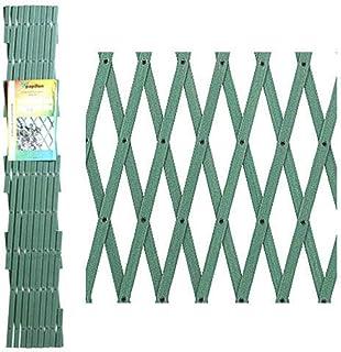 Papillon 8091555 Celosia PVC Verde Extensible 4x1 Metros,
