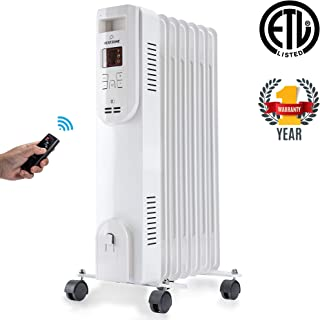 portable heater with remote control
