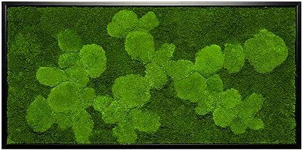 Mosafbeelding muurschildering met mos bolmos mos mosplaat plantenafbeeldingen mosafbeeldingen versch. afmetingen voordelig...