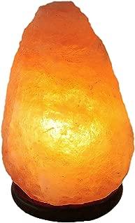 JIC Gem Small Himalayan Salt Light Lamps Natural Crystal Rock 6-7
