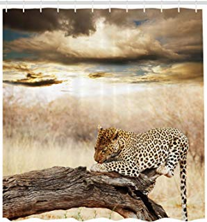 """Ambesonne Safari Shower Curtain, Leopard Resting Dramatic Cloudy Sky Safari Wild Cats Nature Picture, Cloth Fabric Bathroom Decor Set with Hooks, 84"""" Extra Long, Beige Brown"""