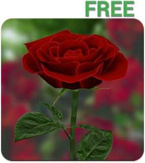 Best 3d rose free Reviews