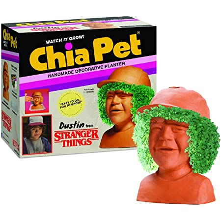 Chia Pet Dustin Stranger Things