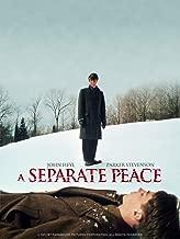 world peace movie