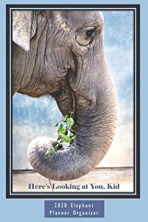 Here's Looking at You, Kid 6x9 2020 Elephant Planner Organizer: Monthly Weekly Agenda Engagement Calendar Planner