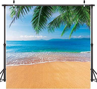 8x8FT Vinyl Photo Backdrops,Tropical,Sunset at Beach with Palms Photo Background for Photo Booth Studio Props