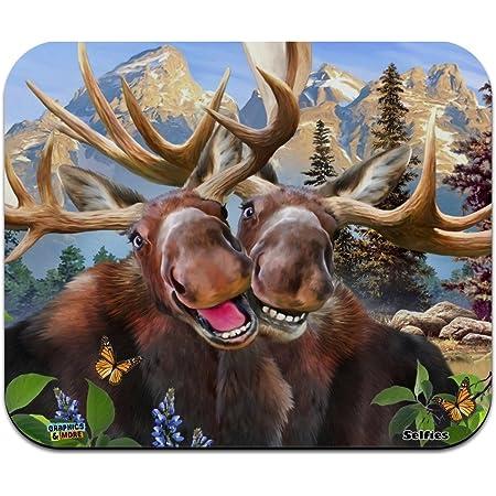 Rocky Mountain National Park Animals Moose Cougar Bear Beaver Elk Novelty Collectible Demitasse Tea Coffee Spoon