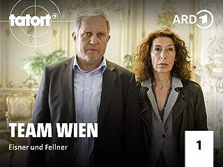 Tatort Wien - Eisner und Fellner - Staffel 1
