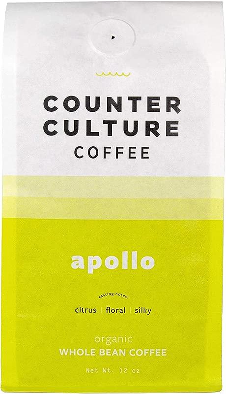 Counter Culture Coffee Apollo 12 Oz Whole Bean