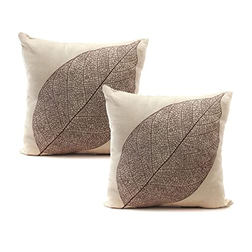 Indoor Throw Pillows for Couch: Amazon.com