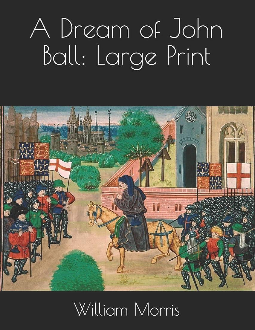 疾患万一に備えて期待A Dream of John Ball: Large Print