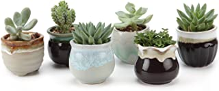 T4U Small Ceramic Succulent Planter Pots with Drainage Hole Set of 6, Sagging Glazed..