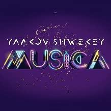 aish yaakov shwekey