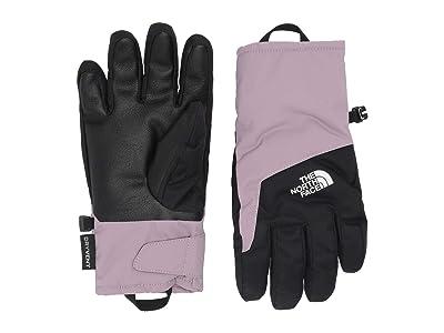 The North Face Kids DryVenttm Gloves (Little Kids/Big Kids) (Ashen Purple) Ski Gloves